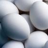Preguntas sobre el huevo