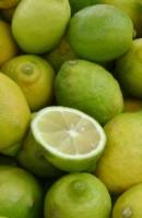 Los limones alivian males y grandes padecimientos su uso es magnifico