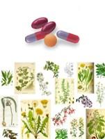 Malas combinaciones de plantas medicinales