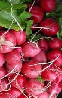 Para qué sirve el jugo de rábano en ayunas