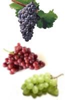 Poder depurativo de las uvas