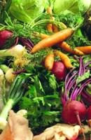 C mo cocer verduras consejos para cocinar las verduras for Como cocinar verduras