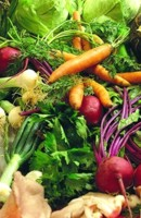 Como cocinar las verduras