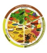 Consejos para la buena alimentación o dieta