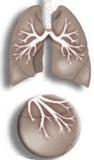 Cómo aliviar el asma naturalmente