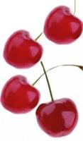 En qué nos ayudan las cerezas en nuestro organismo