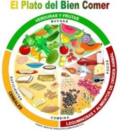 Qué contiene el plato del bien comer