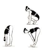 Rutina de ejercicios para estar en forma