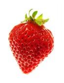 Propiedades de la fresa o frutilla
