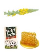 Receta casera con gordolobo para combatir la tos