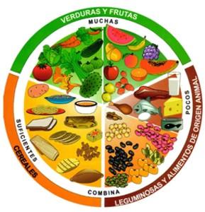 Qué alimentos tiene el plato del bien comer
