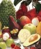 Temporadas de frutas y verduras en méxico