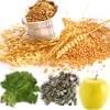 Funciones del magnesio en el organismo