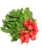 Que nutrientes nos aporta el rabano