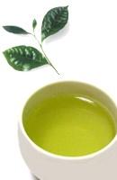 Para que sirve el té verde como planta medicinal