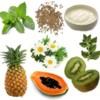 Alimentos para combatir las flatulencias