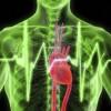 Cómo se puede evitar un infarto