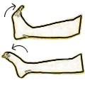 Ejercicios para fortalecimiento de los tobillos