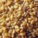 Para qué sirve el ajonjolí como planta medicinal
