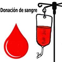 Requisitos básicos para la donación de sangre