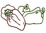 Para qué sirve el pimiento morrón en la piel