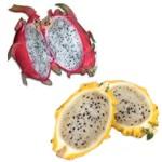 Propiedades medicinales de la fruta pitahaya