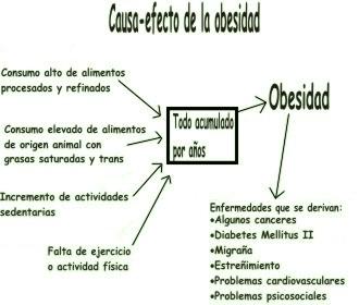 Causas y consecuencias sobre la obesidad
