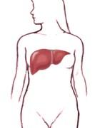 Resumen corto de la hepatitis C