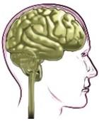 ¿En qué consiste la disfunción cognitiva?