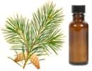 Beneficios y usos del aceite esencial de pino