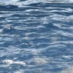 Importancia de no ensuciar el agua