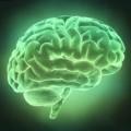 Criterios para ser una persona mentalmente sana
