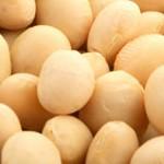 ¿Cómo se manifiesta la alergia a la soja?
