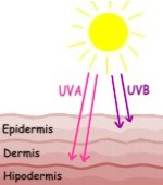 Diferencia entre radiación de rayos UVA y UVB