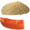Receta del licuado de papaya con amaranto