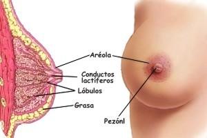 Como se la mama el mismo