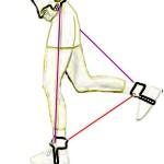 ¿Cómo se puede adelgazar los muslos?