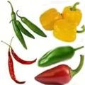 ¿Qué enfermedades cura el chile?