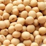 La soja es un anticancerígeno