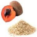 Beneficios del licuado de mamey con avena