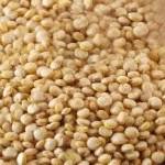 ¿Para qué sirve la semilla de quinua?