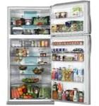 ¿A qué se debe que los alimentos se echan a perder si no están guardados en el refrigerador?