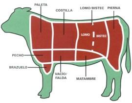 ¿Qué alimentos se extraen de la vaca?