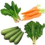 ¿Se puede vivir comiendo solo vegetales?