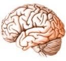 ¿Cómo logramos mantener nuestra salud mental en buen estado?