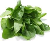 ¿Cómo se come la espinaca cruda o cocida?