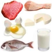 Alimentos obtenidos de los animales