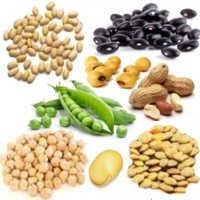 ¿Qué aportan las leguminosas al cuerpo humano?