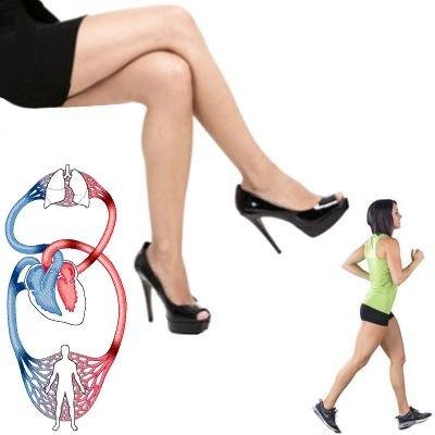El ejercicio beneficia al sistema circulatorio