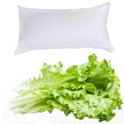 Poner hojas de lechuga debajo de la almohada